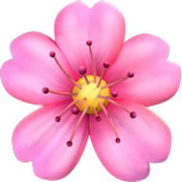 🌸 Emoji Fleur De Cerisier - EmojiFrance